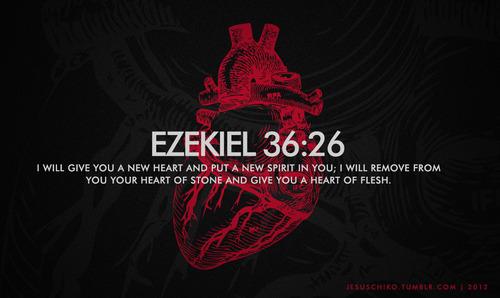 Heart-of-Flesh