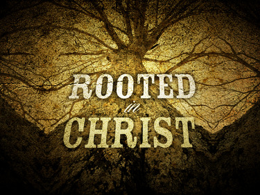 rooted-in-christ-small