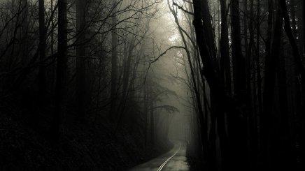 nature-dark-roads-trees-gothic-wallpapers-wallpaper