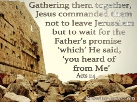 Acts 1-4 Do Not Leave Jerusalem But Wait beige